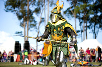 Knights Order Lion Rampant Tournament