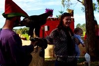 Birds of Prey at the Abbey Medieval Festival